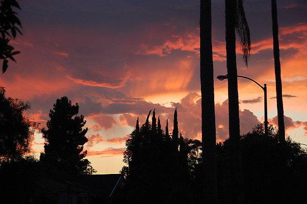 Olin.Sunset