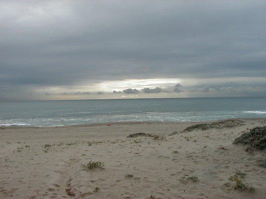 Beach.Pixx.1